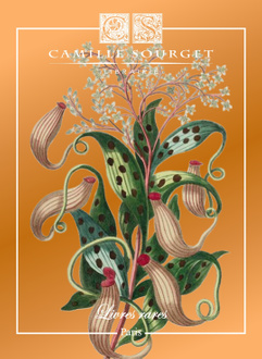 Catalogue n 28 camille sourget