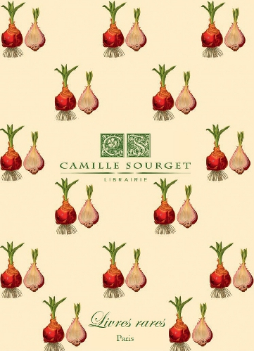 Catalogue n 11 camille sourget